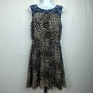 Speed Control New York Cheetah Print Lace Dress